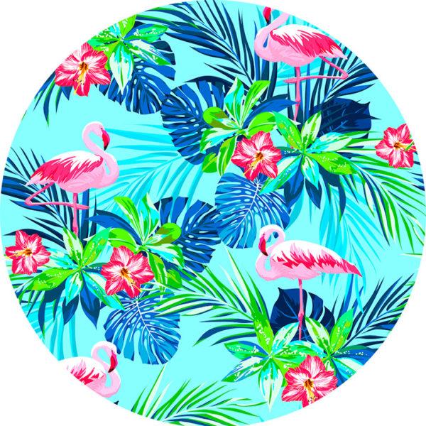 Rainforest-Flamingos