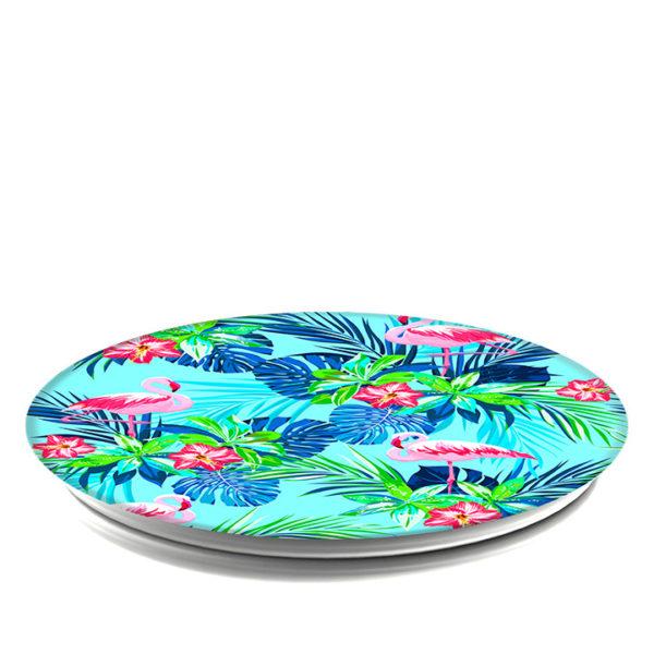 Rainforest-Flamingos-collapsed