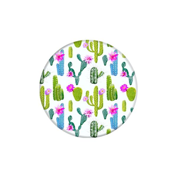 _0002_800138-cacti